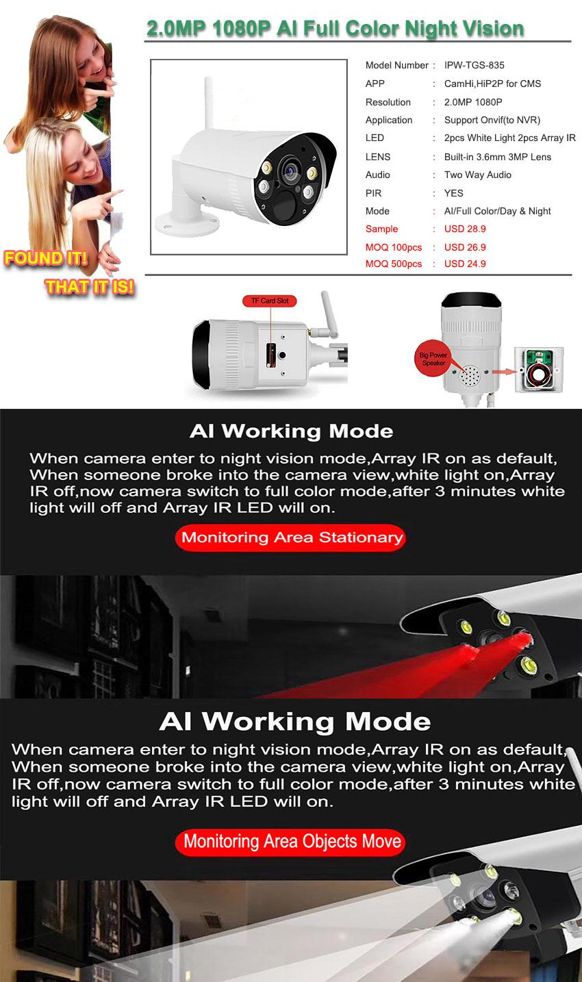 AI Full Color Night Vision WIFI IP Camera